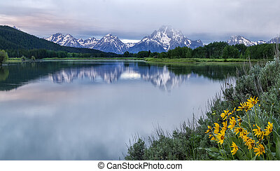 Cloudy Morning at Oxbow Bend Grand Teton National Park