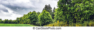 Cloudy panorama landscape with green trees