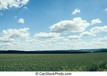 Cloudy sky over a field II
