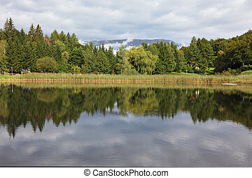 Cloudy sky reflected in small lake