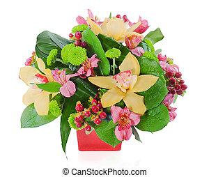 clous girofle, roses, coloré, bouquet, isolé, arrangement, milieu de table, fond, floral, blanc, vase, orchidées