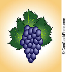 clous-up purple grape isolated