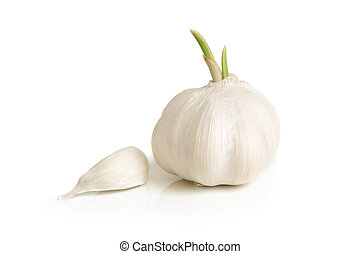 Clove and bulb of garlic on a white background