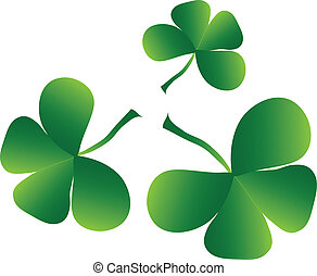Clover four leaf for saint patrick's day - isolated on white...