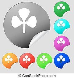 Clover icon sign. Set of eight multi colored round buttons, stickers. Vector