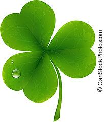 Clover Leaf - Clover Four Leaf For Saint Patricks Day, ...