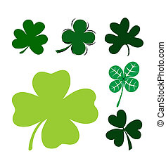 Clover leaves on a white background. A vector illustration
