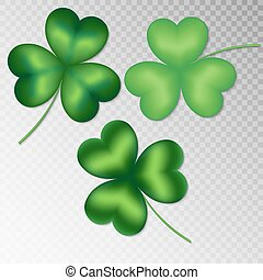 Clover on a transparent background - Collection of green...