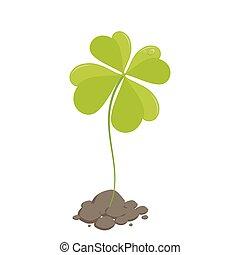 Clover St Patrick's Day