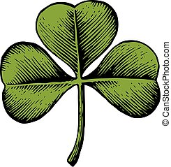 Clover with three leaf - vintage engraved vector illustration (hand drawn style)