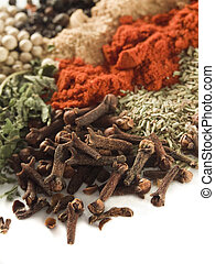 Cloves - closeup of various spices over white