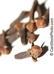 cloves in front of a white background