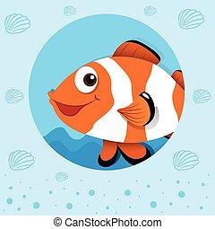clownfish, con, carita feliz