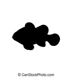 clownfish, silueta, ilustração