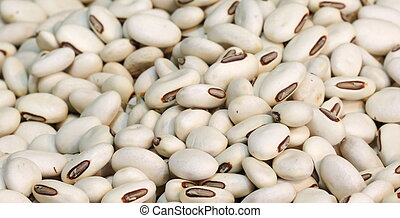 clsoe up white bean background