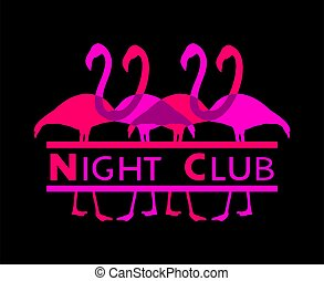 club, nuit, flamants rose, message
