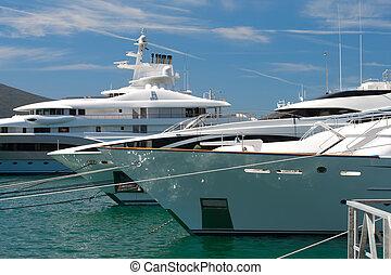 club yacht, dans, montenegro