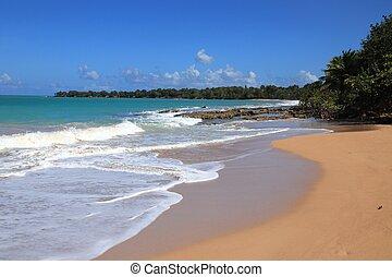Clugny Beach, Guadeloupe