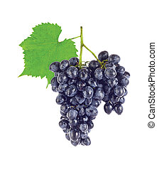 Cluster fresh juicy organic grapes with green leaf