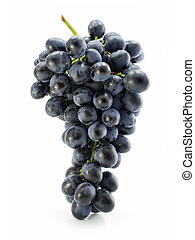 cluster of blue grape isolated