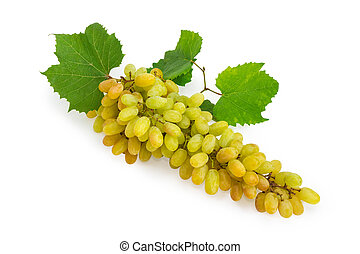 Cluster of the sultana grapes with leaves on white background