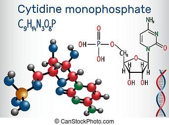 (cmp), cytidine, estrutural, monophosphate, molécula, rna,...