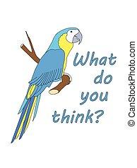 co, ty, myśleć