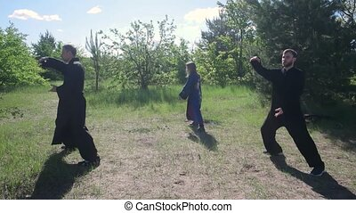 master and students of Wushu practice kung fu tai Chi in nature in the Park
