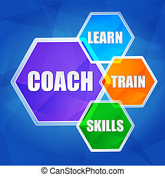 coach, learn, train, skills in hexagons, flat design