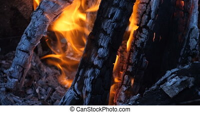 Coals from a tree smolder in a fire. Flame of the Fire