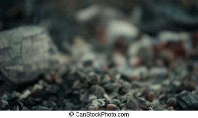 Coals shot with a light blur.