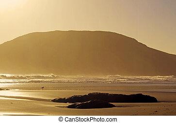 coast at evening background