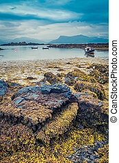 Coast at low tide and ships aground in Scotland