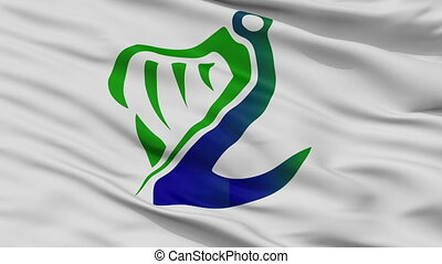 Coast Guard Ireland Flag Closeup Seamless Loop - Coast Guard...