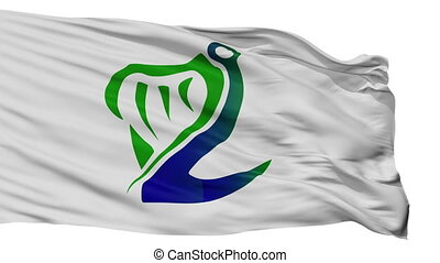 Coast Guard Ireland Flag Isolated Seamless Loop - Coast...