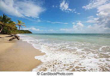 Coast in Costa Rica - Beautiful tropical Pacific Ocean coast...