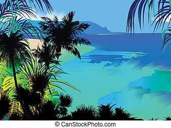 coast., oceano