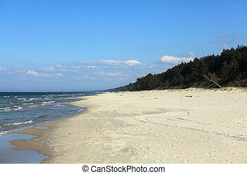 Coast of Baltic sea in sunny summer day
