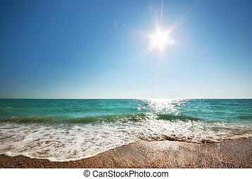 Coast of beach at day.