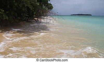 Coast of Isla Zapatilla island, part of Bocas del Toro...