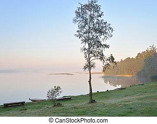 Coast of lake at sunrise.
