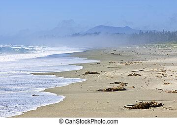 Coast of Pacific ocean in Canada - Long Beach in Pacific Rim...
