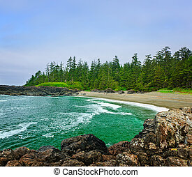 Coast of Pacific ocean in Canada - Rocky shore of Pacific ...