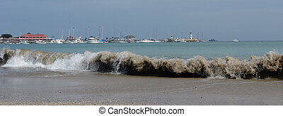 coast of pacific