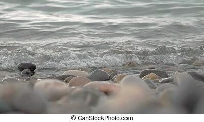 Coast of the Black sea. Batumi, Georgia - Coast of the Black...