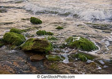 Coast of the Black Sea in Kerch. Kerch Peninsula, Crimea