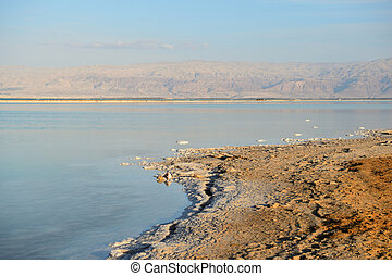 Coast of the Dead Sea in the evening