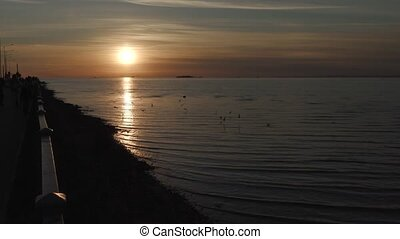 coast of the gulf of Finland at sunset.
