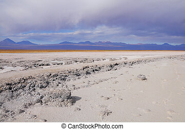 Coast of the salty lake in Atacama desert.
