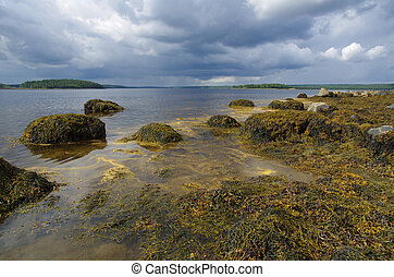 Coast of the White sea in Karelia, Russia